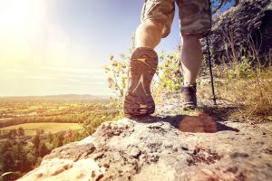 La Sportiva Men'sTarantulace Climbing Shoe Review
